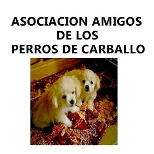 Asociación Amigos de los Perros de Carballo