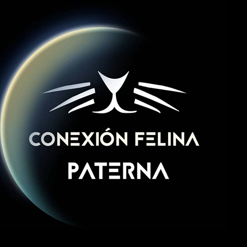 Asociación Conexión Felina Paterna