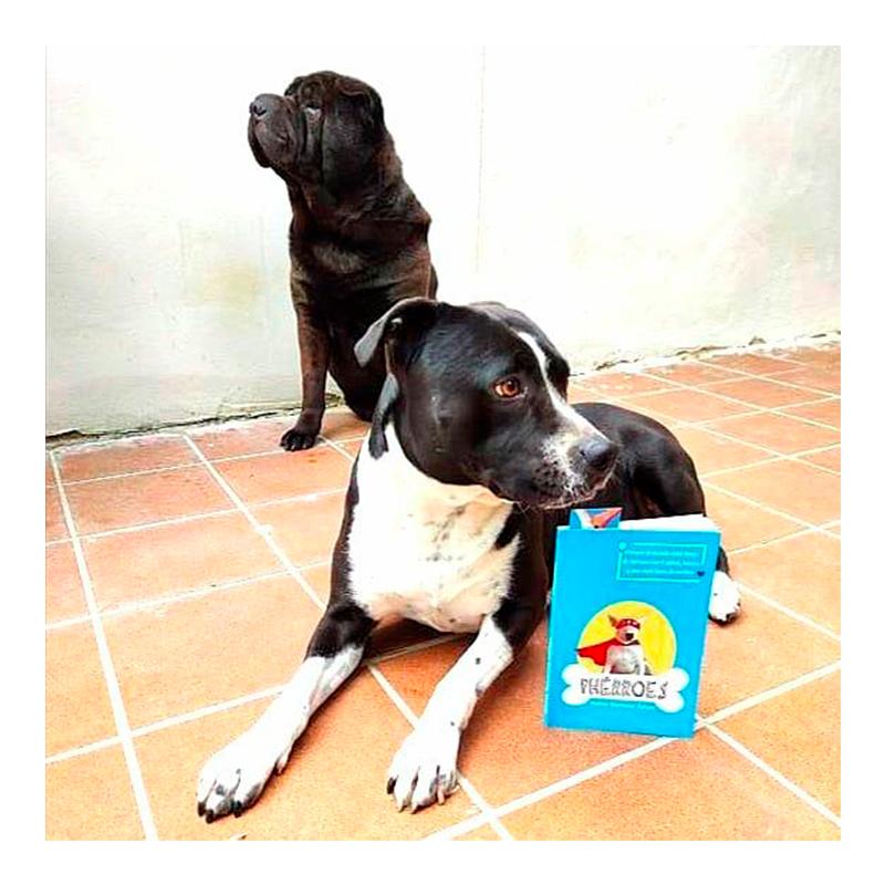 Paida y Rocco